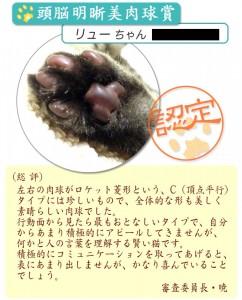 niku1_new2