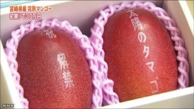 すごい宮崎産マンゴー 2個30万円で落札ほか今日の #スクラップ #2014 #4/10